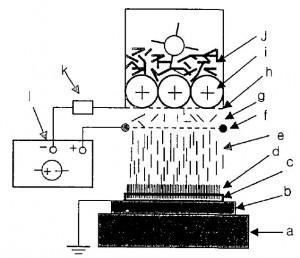 polymer 2001