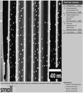 small 2008 nanostructure
